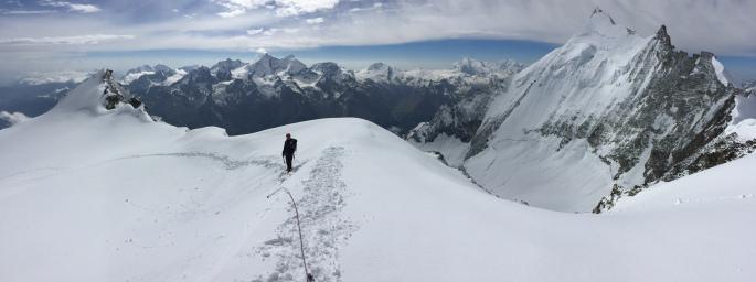 bishorn alpes suizos